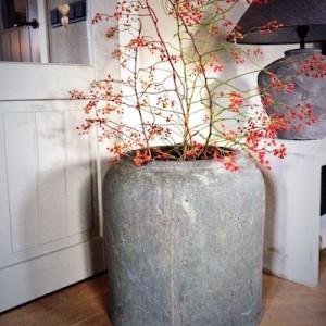 XL pot met rozenbottel